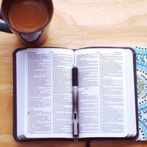 BIBBIE INTERE